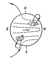 Рис. 17. Возникновение биполярных магнитных областей по гипотезе Х. В. Бэбкока. Штриховые линии показывают направление силовых линий подфотосферного тороидального магнитного поля, образованного из полоидального поля (p - ведущая, а - последующая часть области).