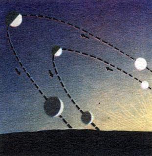 Рис. 29. Расположение орбит Меркурия и Венеры относительно горизонта для наблюдателя, когда Солнце заходит (указаны фазы и видимый диаметр планет в разных положениях относительно Солнца при одном и том положении наблюдателя)